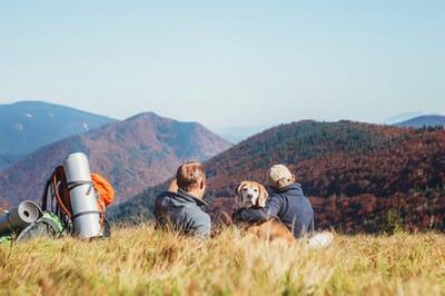 pies w górach