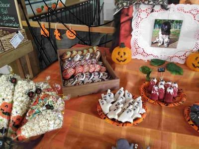 pasteleria para perros miguitas halloween