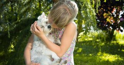 niña besa perro