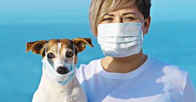 perro con mascarilla junto a su humana tambien con mascarilla