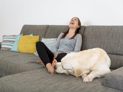 dia de la madre perro lamiendo pies