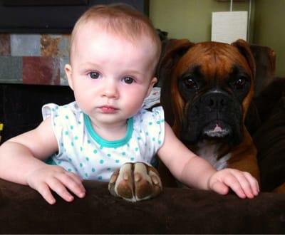 bebe con boxer