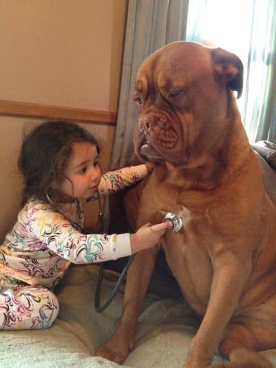 niña medico y perro