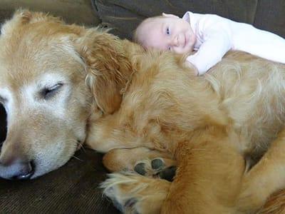 niño y perro abrazados