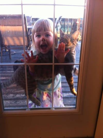 niña y perro en la ventana