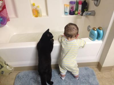 niño y gato en la bañera