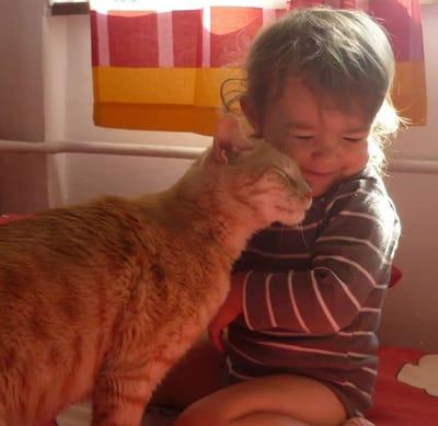 beso entre niña y gato