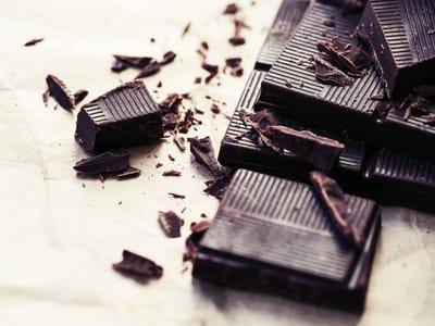 chocolate prohibido para perros