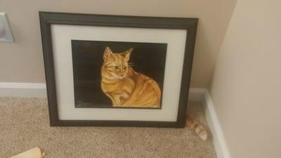 gato escondido cuadro