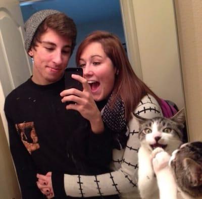 gato entrometido enamorados