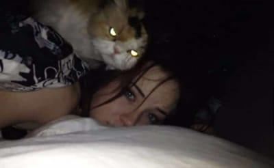 gato poseido con su humana