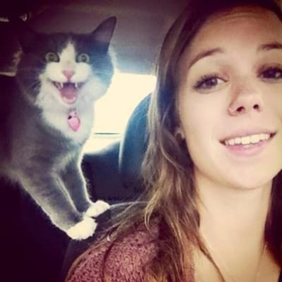 Lustiges Selfie mit Katze