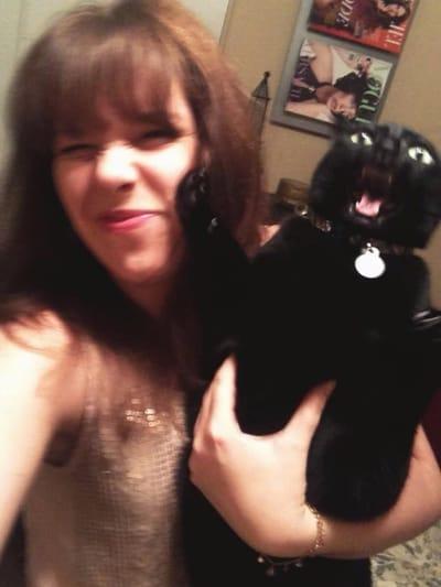 gato negro arana duena