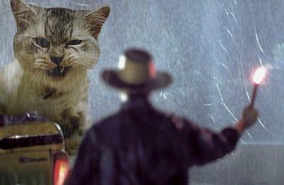gato bajo lluvia Jurassic Park