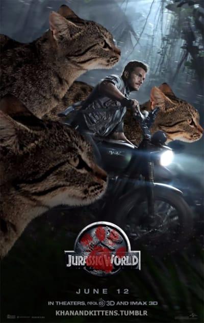 Chris Pratt cartel gatos  Jurassic Park