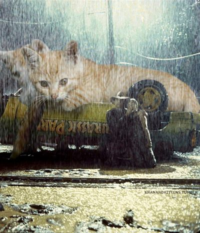 gatos rubios amenazan Alan Grant y Ellie Sattler  Jurassic Park