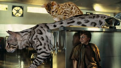 gato acorralan nino Jurassic Park