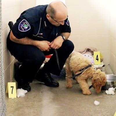 policia investigando crimen
