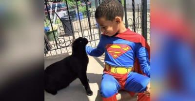 nino superman gato negro