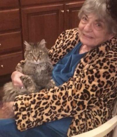 abuela y gato