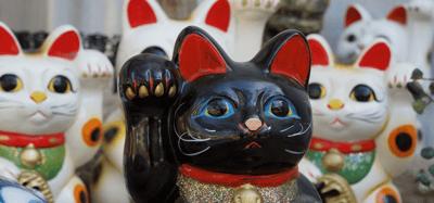 gatto nero maneki neko