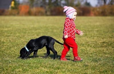 bimba passeggia con un cane cucciolo sull'erba