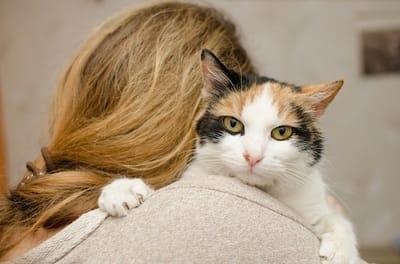 gatto sulle spalle della padrona