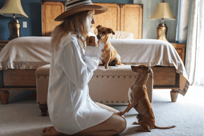 Training your pet with a treat
