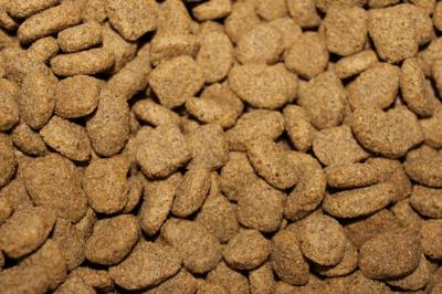 kibble dry feed