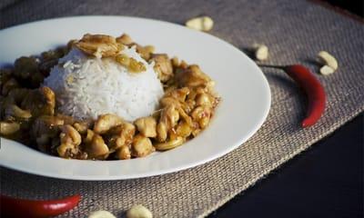 arroz con pollo para gatos