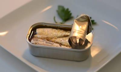 receta sardinas en aceite para gatos