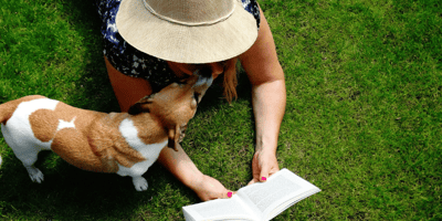Woman with Jack Russell dog reading a book