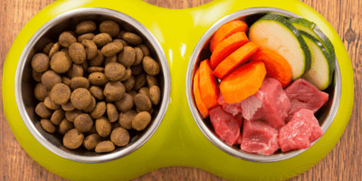 Bowl of kibbles and veg and meat