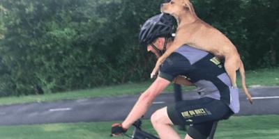 ciclista-con-cane-sulle-spalle