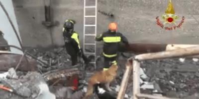 Vigili del fuoco impegnati nel soccorso a Genova