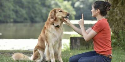 Padrona che insegna il no al proprio cane