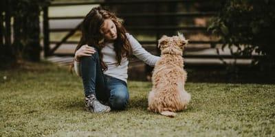 Cane seduto di spalle accarezzato da padroncina