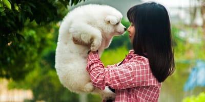 Padrona che prende in braccio il suo cane bianco