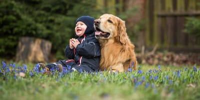 Il cane non sopporta la tata, i genitori scoprono il perché
