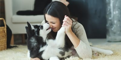 pies-przyjacielem-człowieka