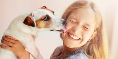 Schlabber: 5 erstaunliche Gründe, warum der Hund leckt