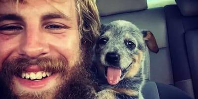 17 perros al momento de conocer a sus nuevos humanos