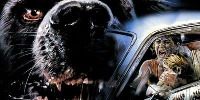 Las mejores películas de terror protagonizados por perros: ¡No aptas para todos los públicos!