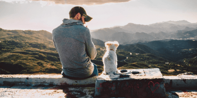 white small dog sitting next to his owner