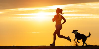 Bieganie z psem: Jak zacząć? Jakie rasy będą najlepsze?