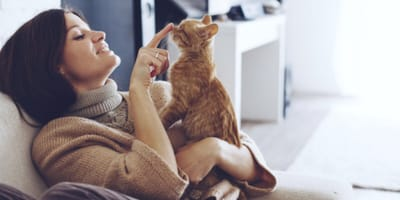 5 benefits of having a cat at home