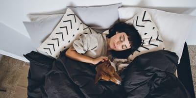 Cosa significa sognare un cane? Spiegati i sogni più diffusi