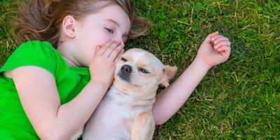 Czy psy rozumieją ludzką mowę?