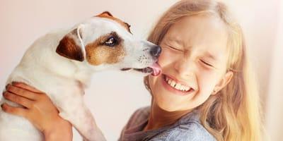 pies liże dziewczynkę