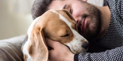 Czy spanie z psem lub kotem to dobra decyzja?